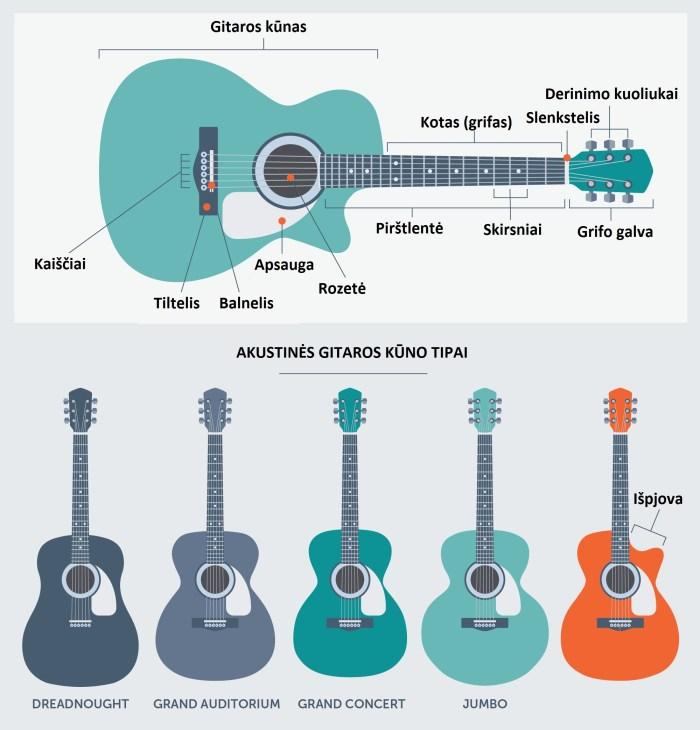 guitar-body-types