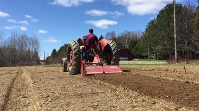 Spring on the Farm
