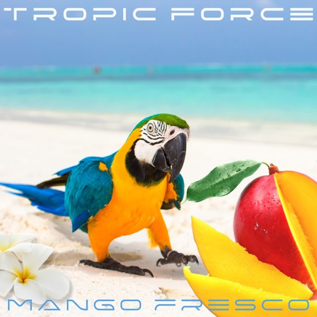 There are no strict rules in the music of TROPIC FORCE and who is DJ PARROT ?