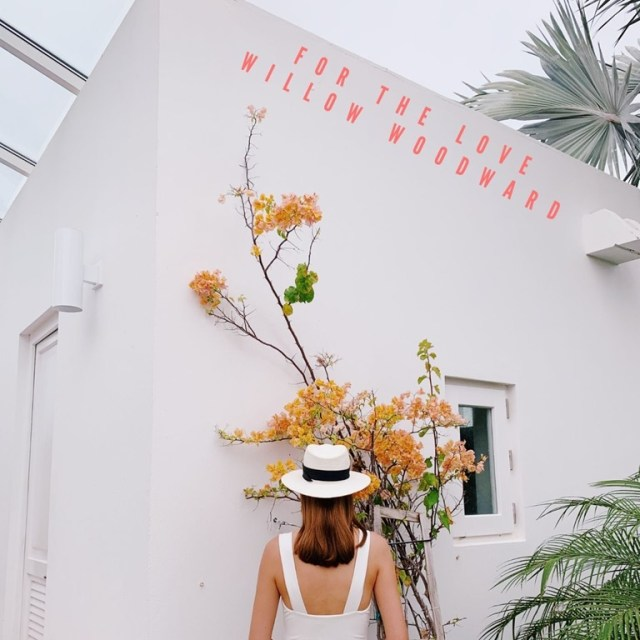 Indie electronic female artist 'Willow Woodward' steps forward for the love and into the light with a groovy new single 'For the Love' and it's euphoric pop sound of reverberated love togetherness, it's pop magic.
