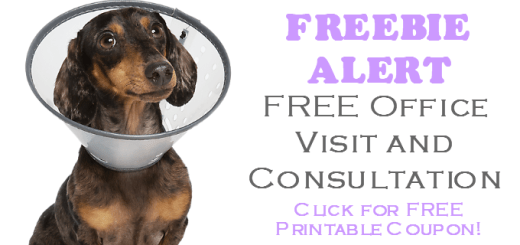 Banfield Pet Hospital FREE Pet Health Exam