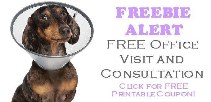 Banfield Pet Hospital FREE Pet Health Exam