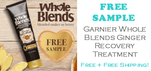 Garnier Ginger Recovery Treatment FREE SAMPLE