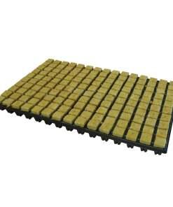 Grodan Rockwool Cube Tray