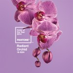 Radiant Orchid Color of the Year in 2014.