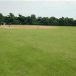 富津運動広場 野球場