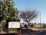 木崎コミュニティ運動公園