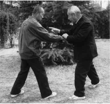 4171_4_18-xingyi-fists