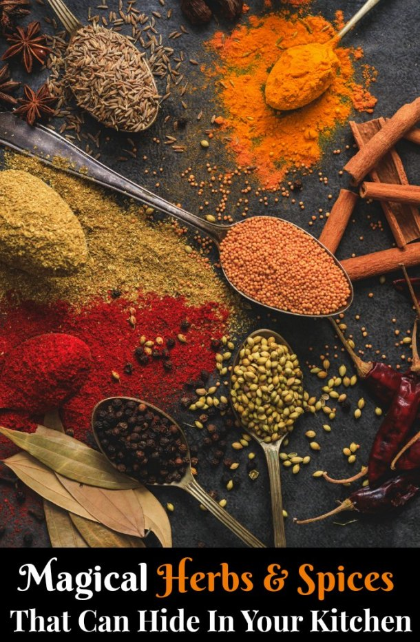 magical herbs and spices in the kitchen