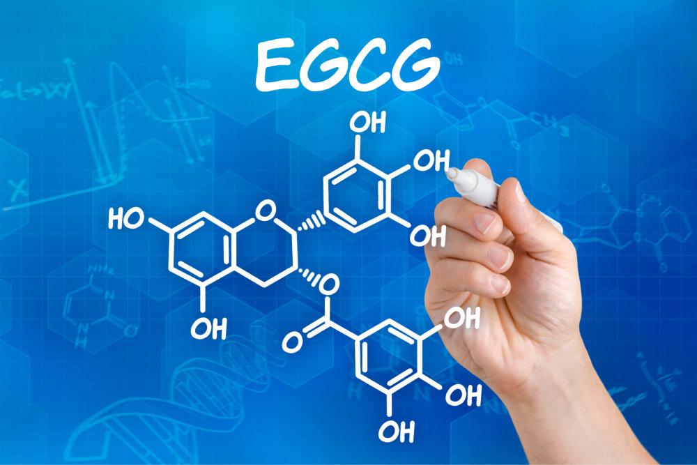 EGCG antioxidants