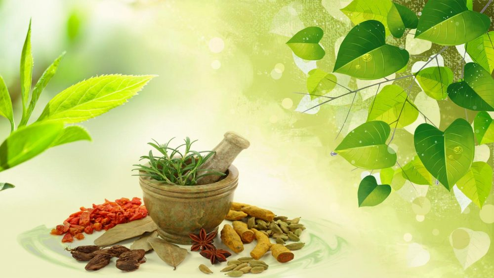 Ancient Ayurveda: New Insights for Wellness