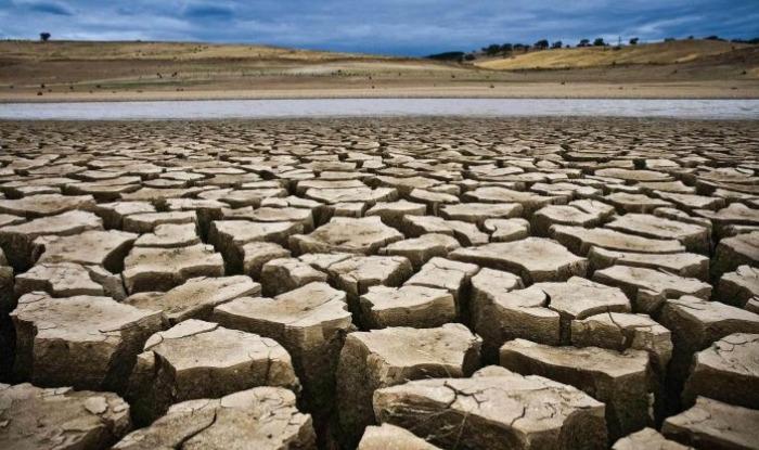 Bihar, ponds, water source, cm nitish kumar, nitis government, land mafia, ground Report, patna, darbhanga, talab, drought, groundreport.in