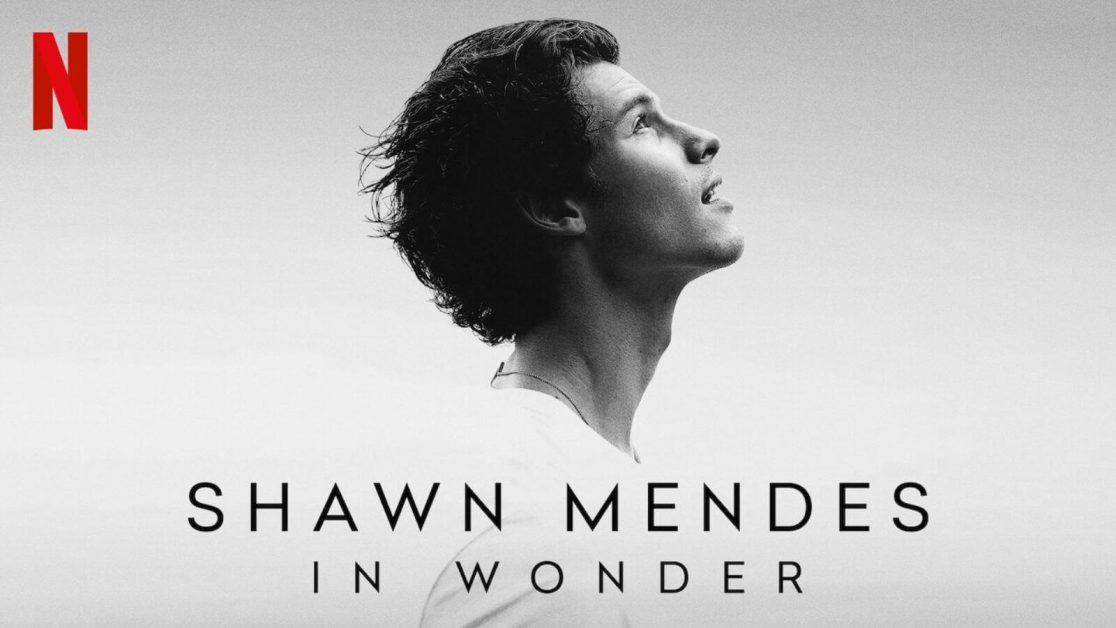 Shawn Mendes: In Wonder' streaming on Netflix • Reviews