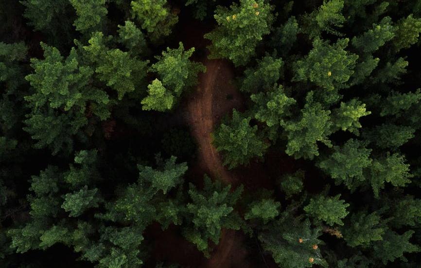 environment varad kubal