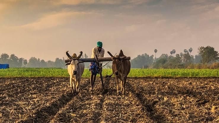 किसानों का दमन करती सरकार