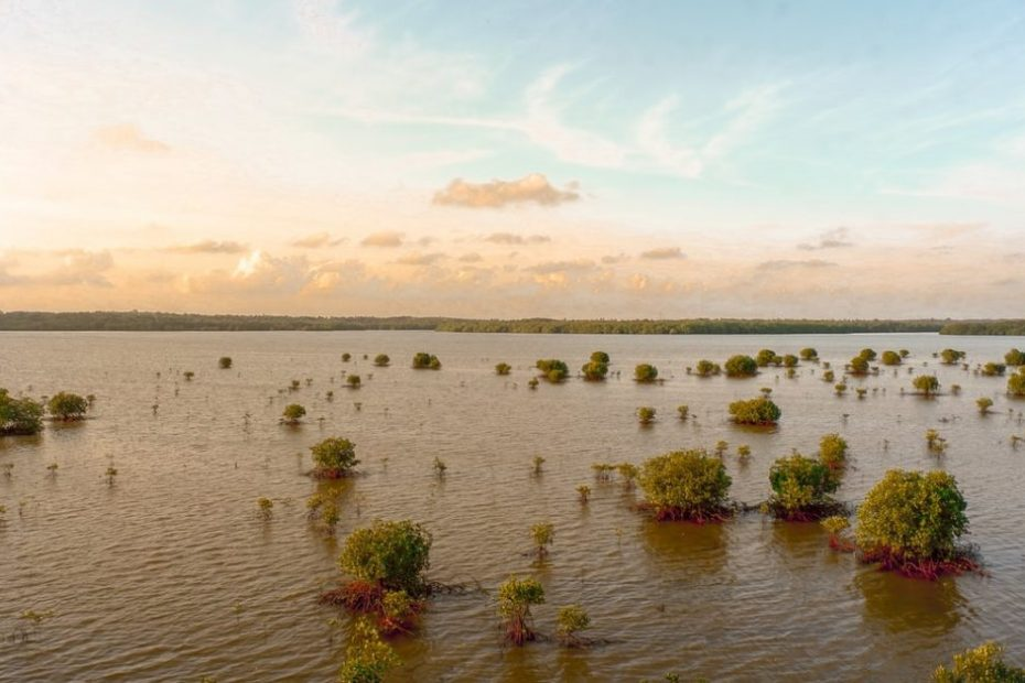 Flood risk may increase up to 50 times