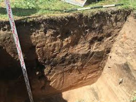 soil for septic