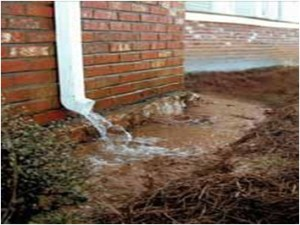 why septic tanks fail