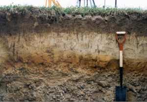 testing soils for septic system