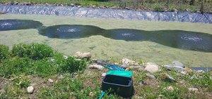 aeration lagoon system