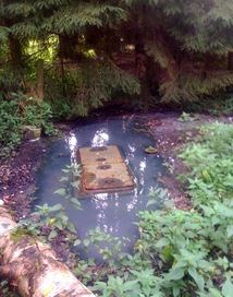 septic tank filling with groundwater