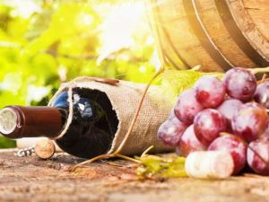 commercial septic system for wineries