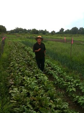 Meet Surik Mehrabyan, Groundswell Incubator Farmer