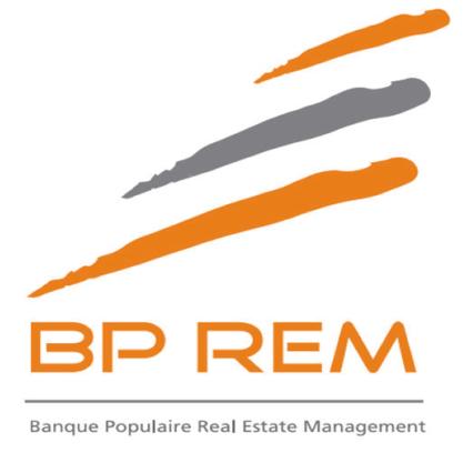 BP REM 100-01