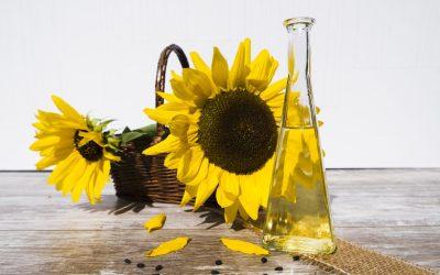Performances des huiles de table dans les commerces traditionnels