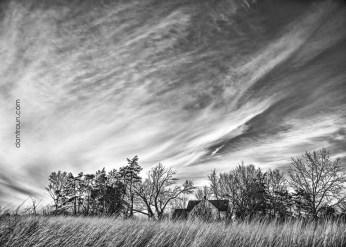 Country Farmstead