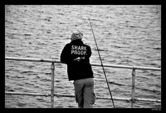 Shark Proof