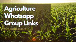 Agriculture whatsapp group links,Agriculture whatsapp group link,Agriculture group,Agriculture group,Agriculture whatsapp group,