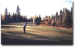 Boy Golfer