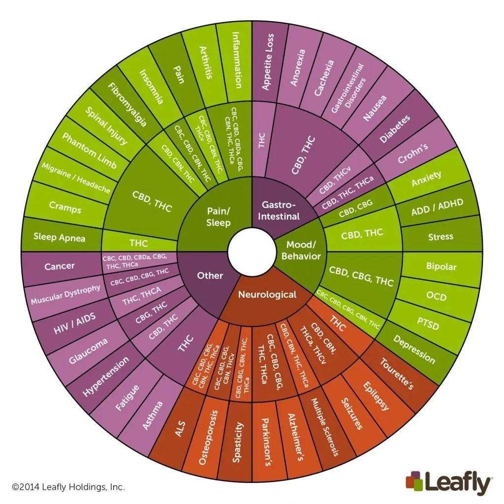 Leafly_Cannabinoid-Wheel