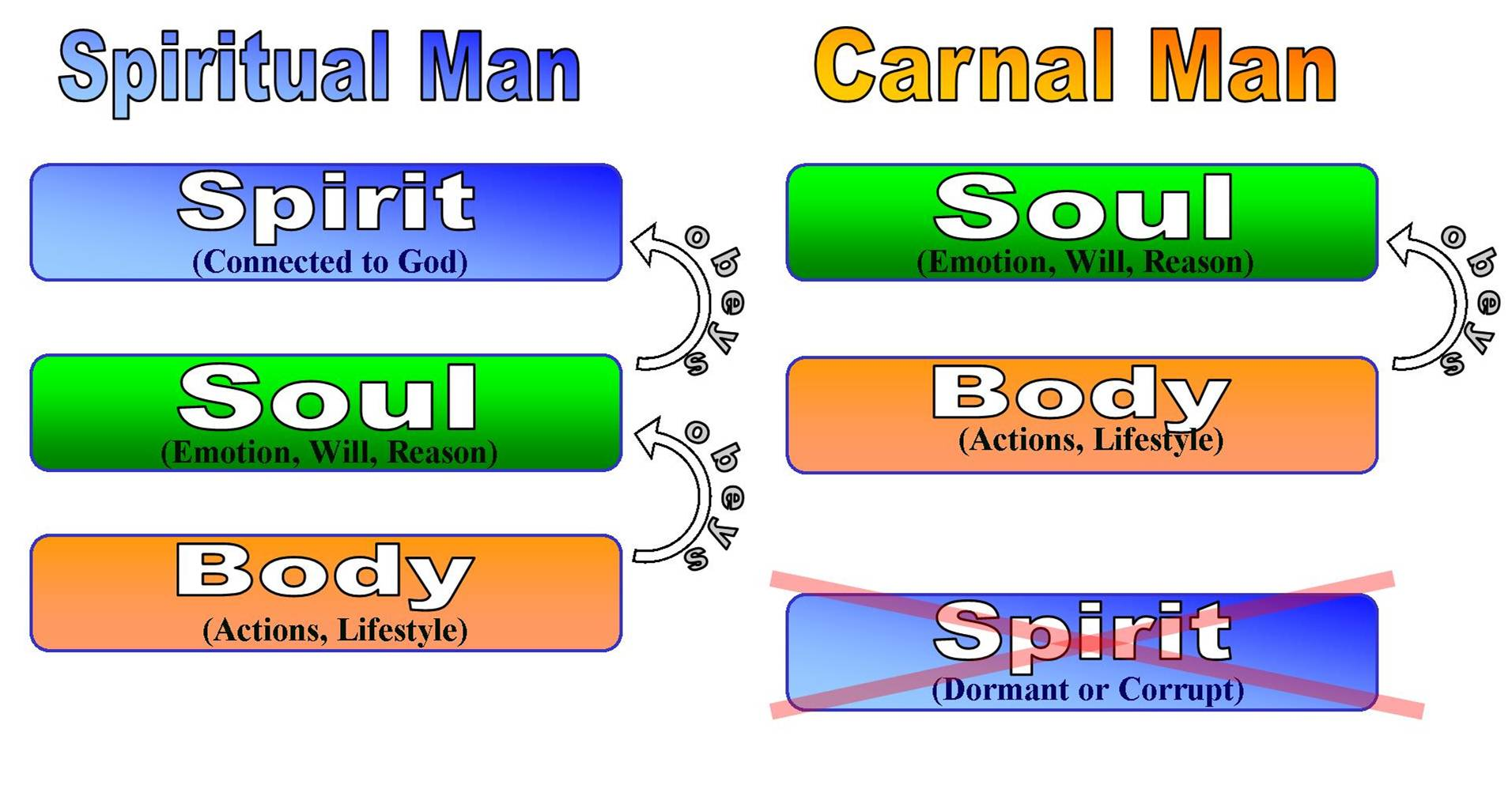 Spiritual Man Vs Carnal Man Daniel Grove S Blog