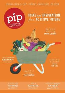Pip Magazine Issue 19 Cover