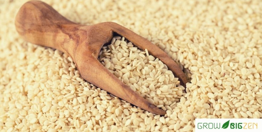 The Healthiest Seeds to Have in Your Kitchen