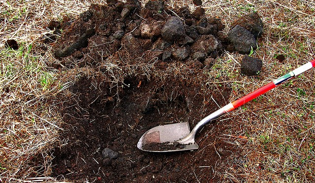 Are You Digging a Hole, Investing, or Gambling?