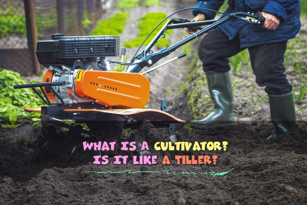 What Is A Cultivator? Is It Like a Tiller?