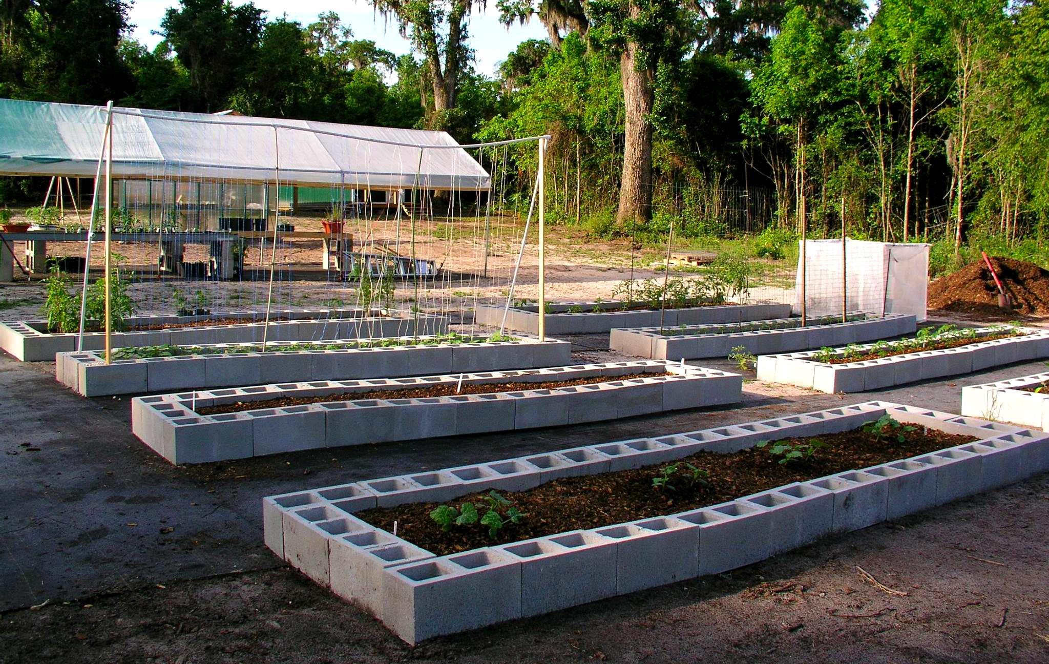 Raised Vegetable Garden Depth