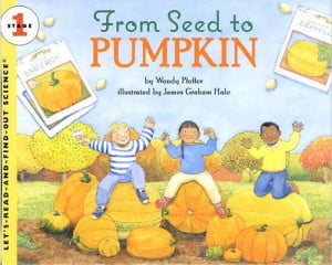 Image result for from seed to pumpkin