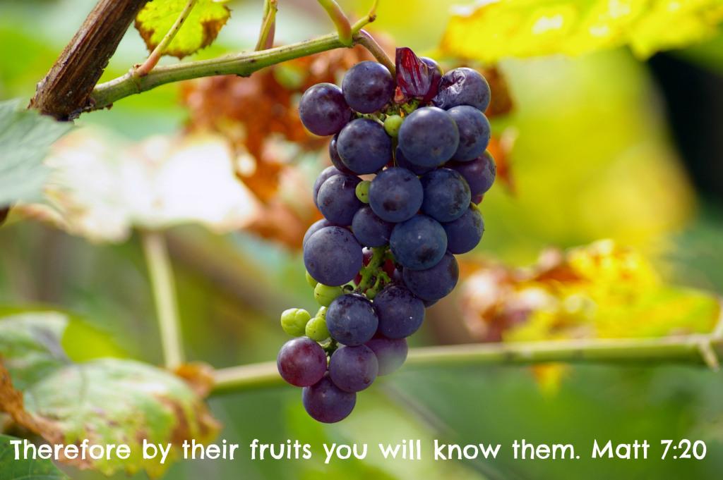 grapesrev