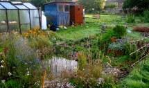 perma pond