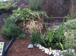 Herb Spiral and Pond in Front Forest Garden