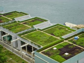 Green Roofed Seaside Housing Complex / Holiday Homes