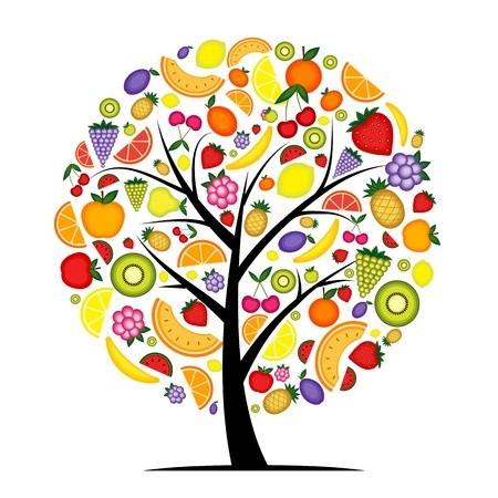 Discipleship Devotional Study Guide - He Went To Look For Fruit On It - Luke 13:6-9 - Growing As Disciples