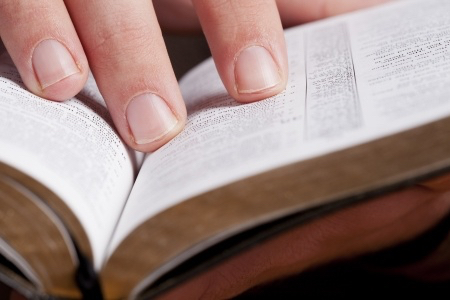 Discipleship Devotional Study Guide - God's Word - Psalm 119:11 - In My Heart - Growing As Disciples