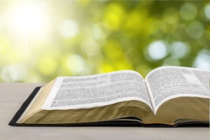 Discipleship Devotional Study Guide - Blessing - Proverbs 29:18 - No Revelation - Growing As Disciples