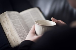 Discipleship Devotional Study Guide - Prayer - Matthew 4:4 - Every Word - Growing As Disciples
