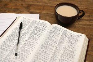 Discipleship Devotional Study Guide - Promises - Day 7 - Psalm 1:1-6 - Meditates Day And Night - Growing As Disciples
